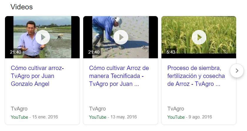 Videos como fragmentos enriquecidos en el buscador de Google